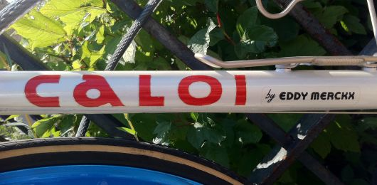 caloi by eddy merckx tube