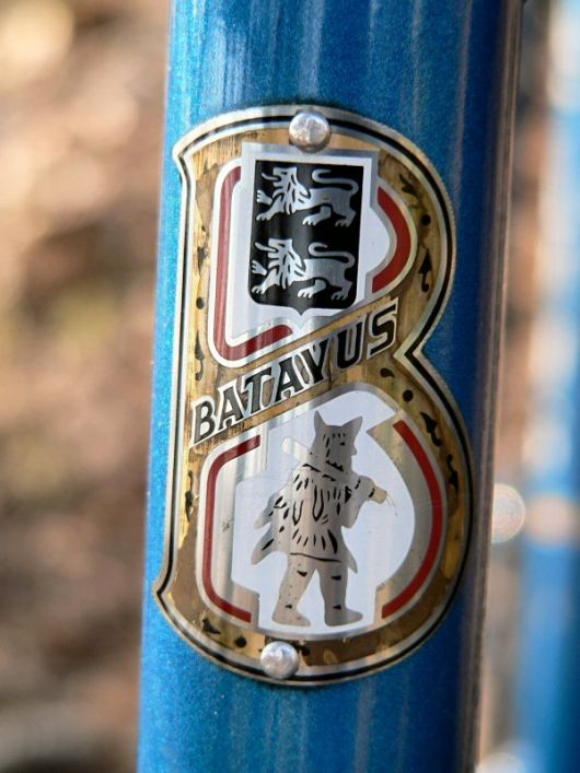 batavus headbadge